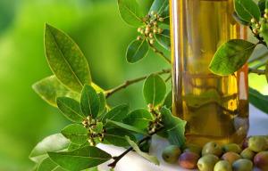 Bottle of olive oil and olives.