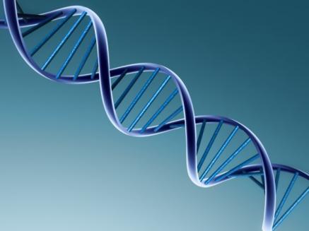 genetics_def_13202_2